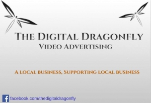 Digital Dragonfly Logo
